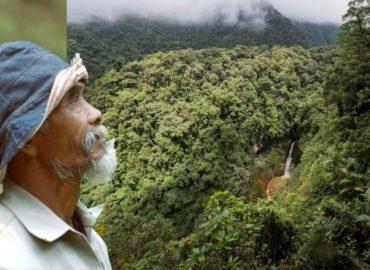 Sadiman, el hombre que plantó más de 11 mil árboles para revertir estragos de sequías Sadiman, el hombre que plantó más de 11 mil árboles para revertir estragos de sequía