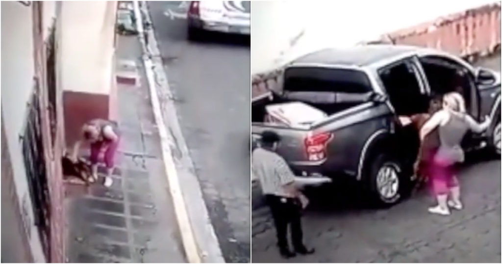 Paró su auto, subió a un perro callejero y lo llevó al veterinario