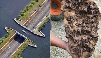18 fotografías sorprendentes de cosas poco comunes