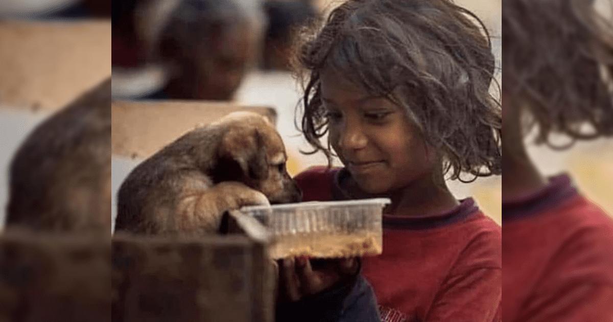 Niña conmueve a las redes por alimentar a un cachorro abandonado en la cuarentena