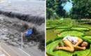 20 imágenes que muestran el poder incomparable de la naturaleza