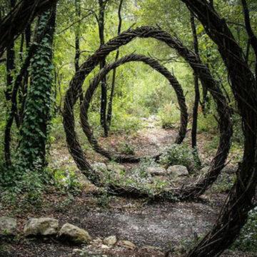 16 esculturas hechas con cosas naturales por un artista que pasó un año en el bosque
