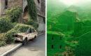 30 fotos del poder de la naturaleza recuperando su territorio