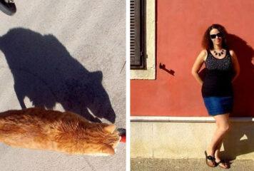 21 sombras en imágenes que jugaron totalmente con nuestro cerebro