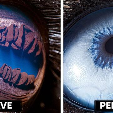 20 Fotos únicas que muestran los ojos de los animales como nunca los habías visto