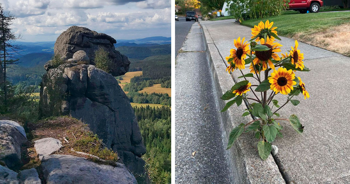 20 Veces en que la naturaleza se esforzó por impresionarnos