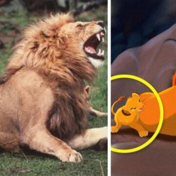 13 fotos de animales que son la copia exacta de personajes de Disney