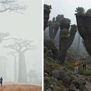 20 lugares en que la naturaleza se esforzó para impresionarnos