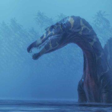 Encuentran el primer dinosaurio acuático que conocía la humanidad