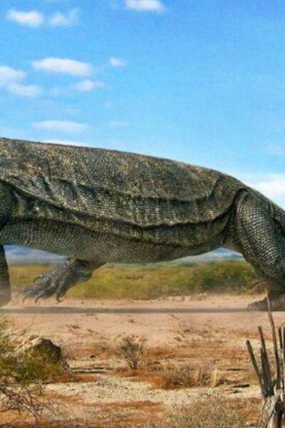 10 animales gigantes y aterradores que vivieron después de los dinosaurios