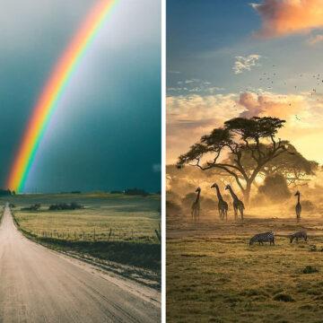 20 Momentos en que la naturaleza se esforzó para sorprendernos
