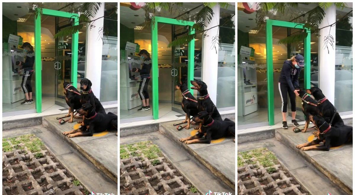 """Mujer fue al cajero automático en compañía de """"guardaespaldas"""", sus tres perros Dóberman"""