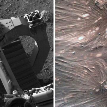 Las 17 mejores imágenes tomadas con la sonda Perseverance en sus primeros días en Marte