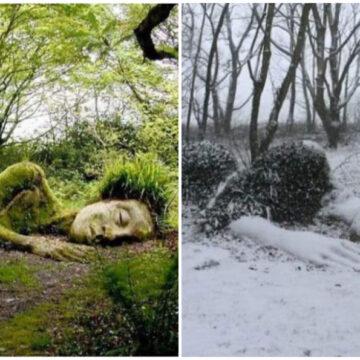 """""""Los jardines perdidos de Heligan"""" nos sorprenden con su maravilla"""