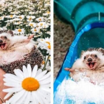 El photoshop nos deslumbra con el cambio maravilloso que logra en estas fotos