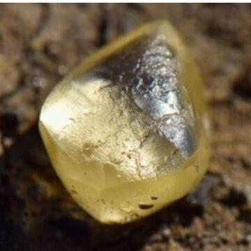 Pareja Recoge una Piedra y Resulto ser un Diamante